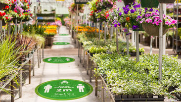Round social distance markers in a garden centre